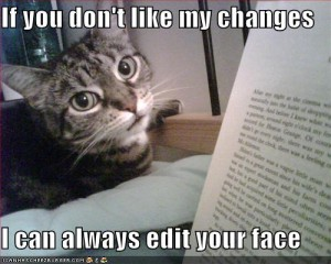funny-pictures-cat-threatens-to-edit-your-face1